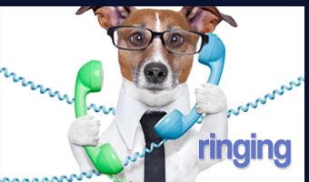 ringing-image-5
